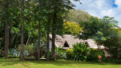 Plantation Lodge, Tanzania