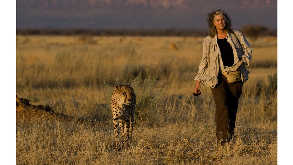 Dr. Laurie Marker with Chewbaaka, Christophe LePetit/Courtesy of Cheetah Conservation Fund