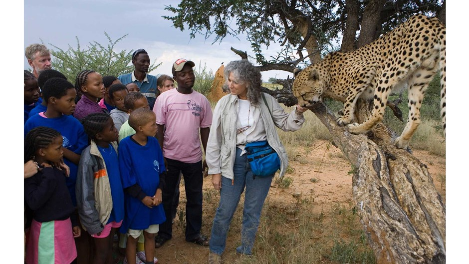 Dr. Laurie Marker with Chewbaaka at an education program in Namibia, Suzi Eszterhas/Courtesy of Cheetah Conservation Fund