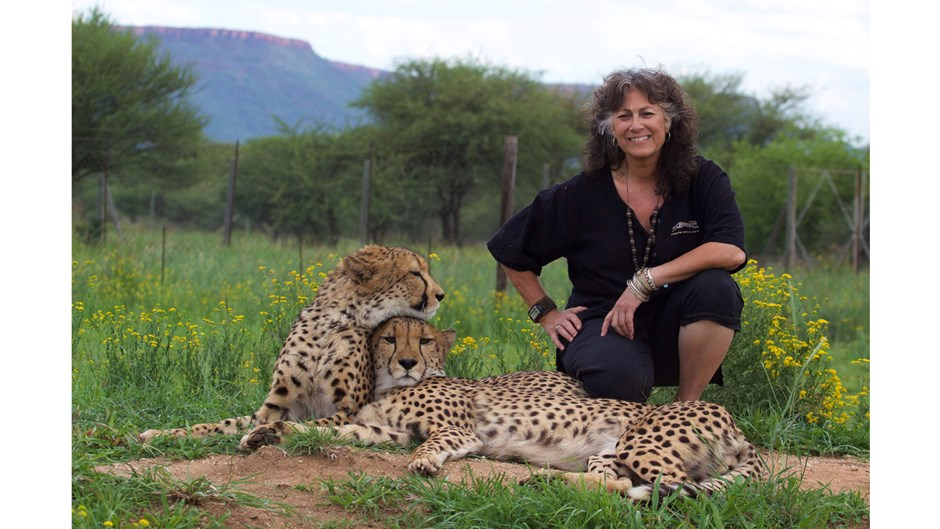 Dr. Laurie Marker with two cheetahs, Eli Walker/Courtesy of Cheetah Conservation Fund