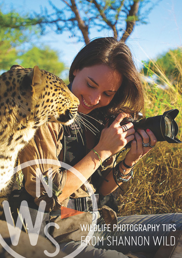 Shannon Wild Photography Guide