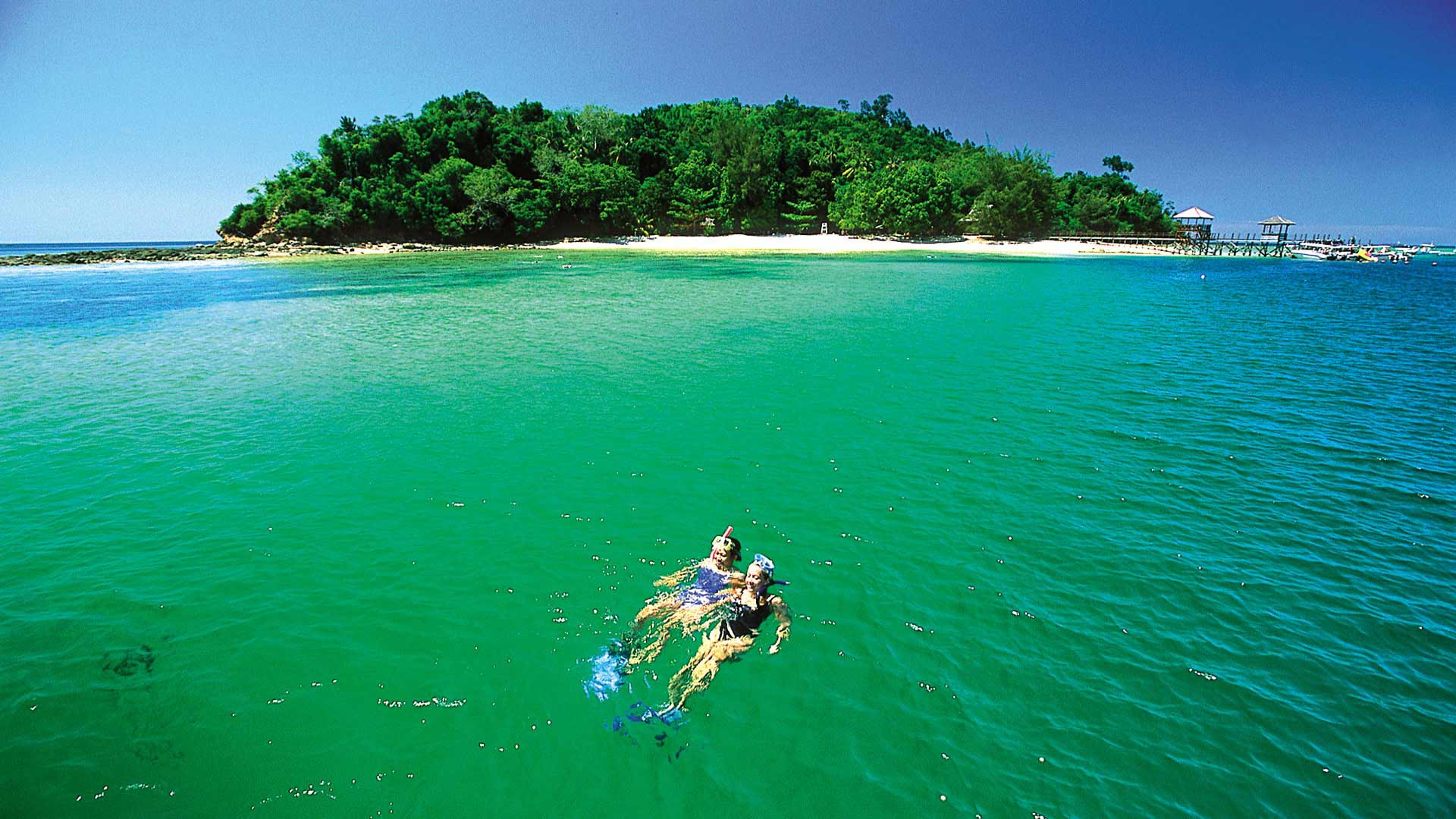 Best time to Visit and when to go to Borneo - Natural World