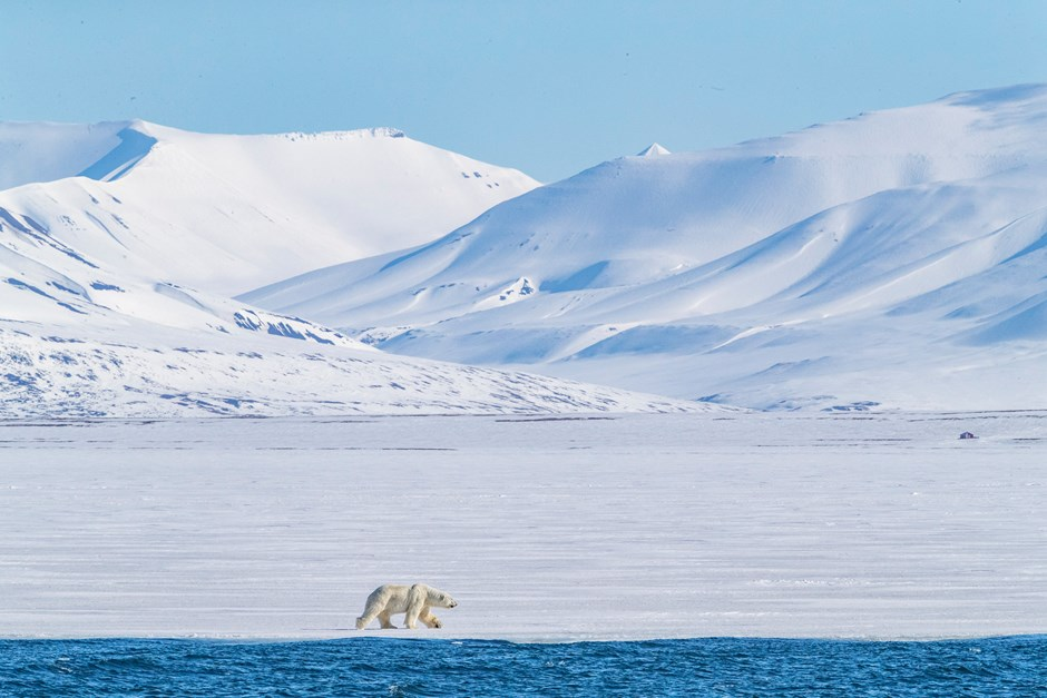 Svalbard May 2019 | © Steve Winter