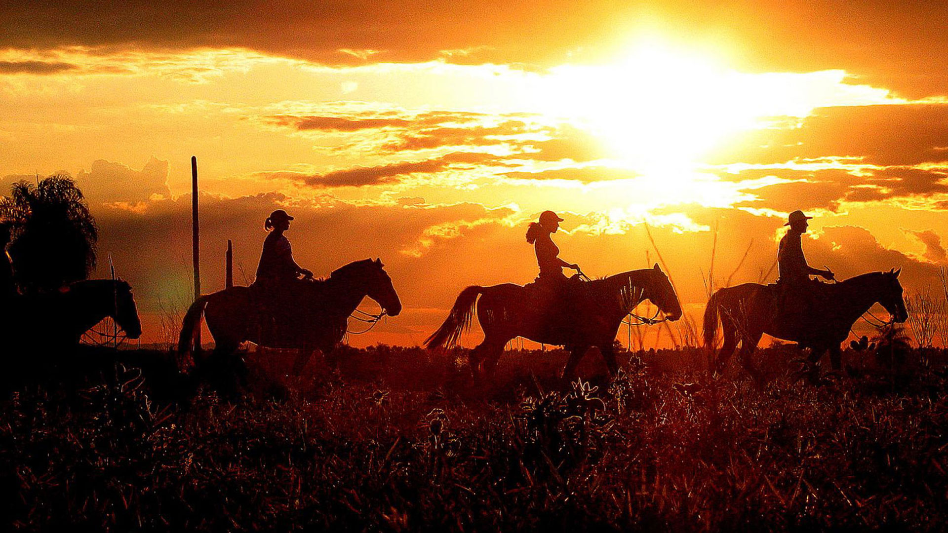 Horseriding in the Pantanal, Brazil