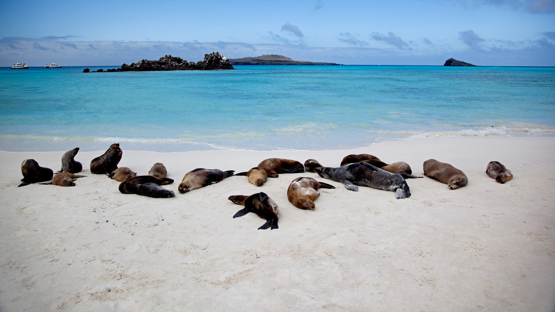 Galapagos Islands Holidays