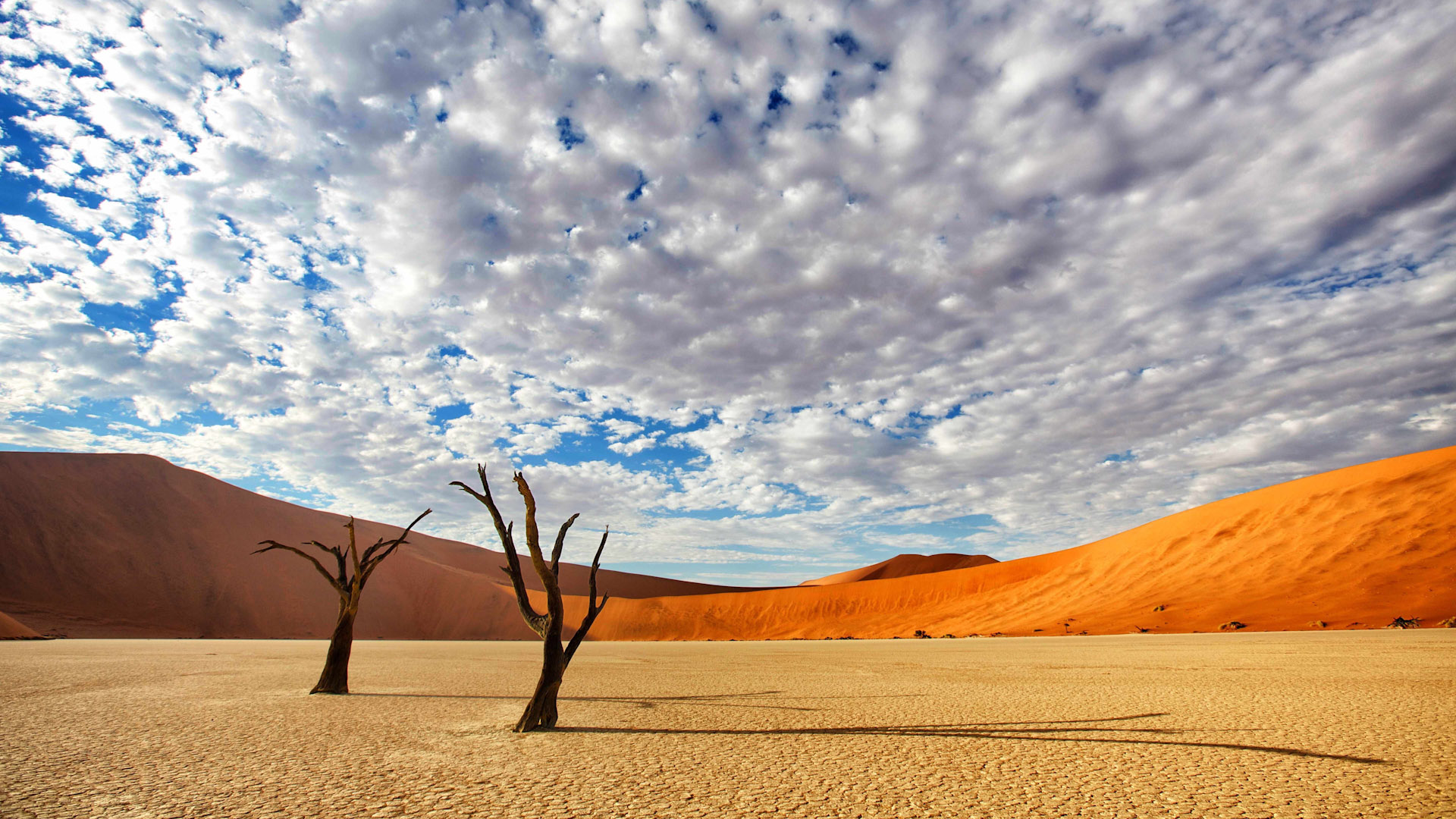 Namibia by Russ MacLaughlin