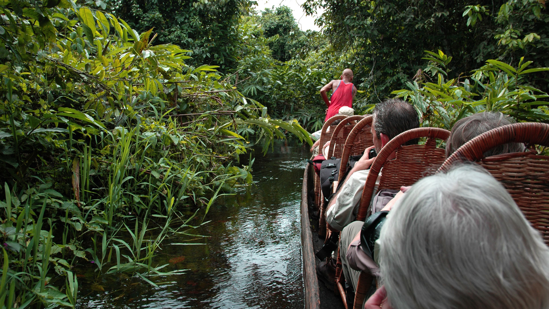 Pirogue safari, Republic of Congo