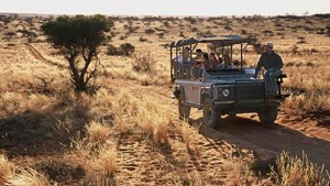 Tswalu Game Drive, South Africa