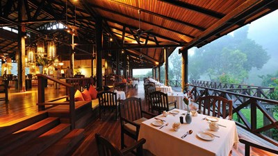 Borneo Rainforest Lodge, Borneo