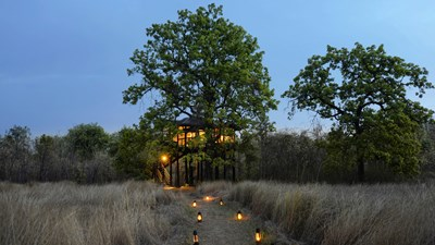 Pench Tree Lodge, India