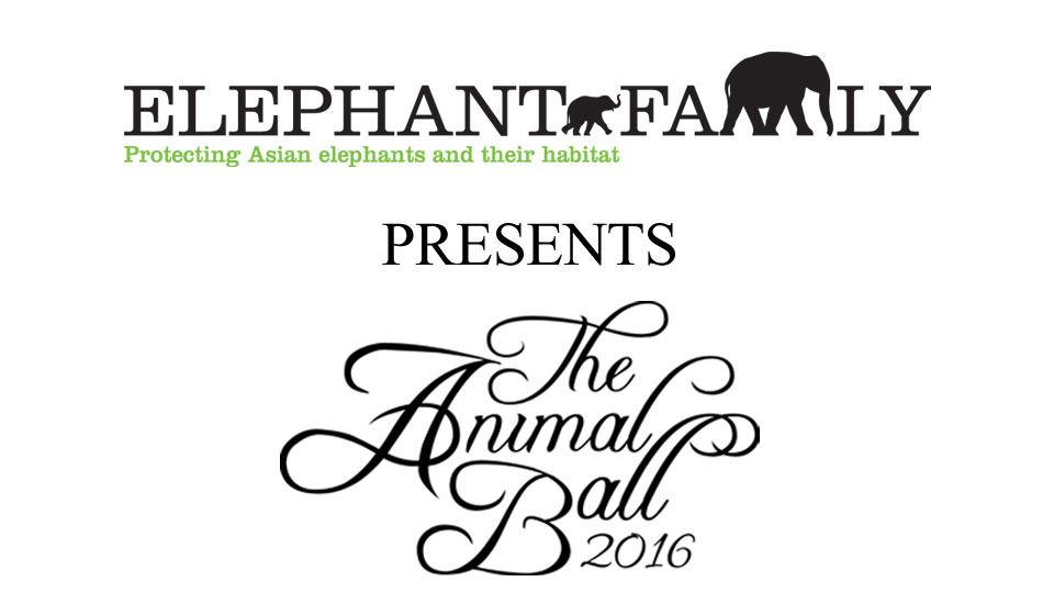 Elephant Family presents The Animal Ball